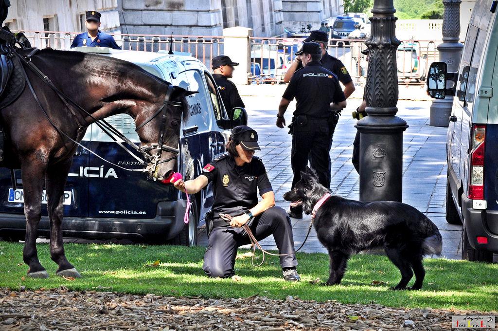 Ellos nos protegen eficazmente del terrorismo. FORO POLICÍA