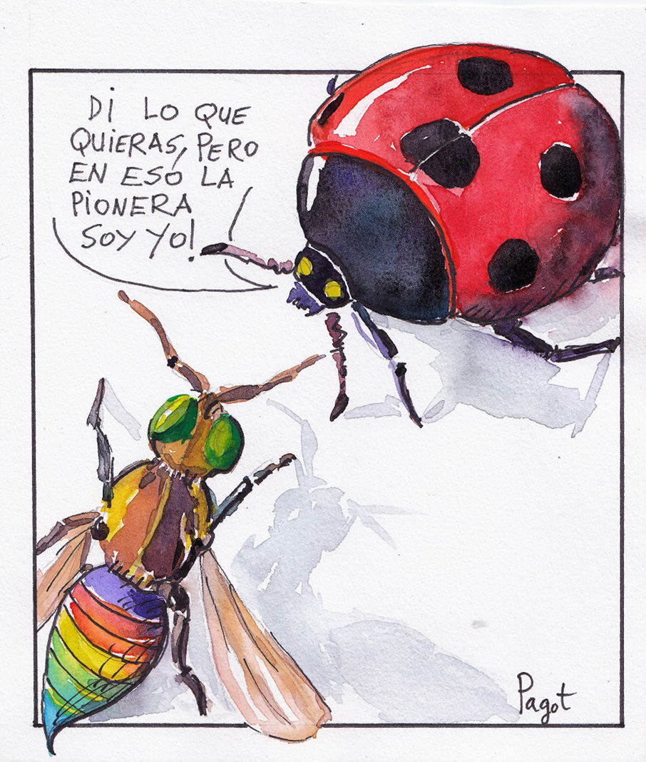 Insectario. PAGOT