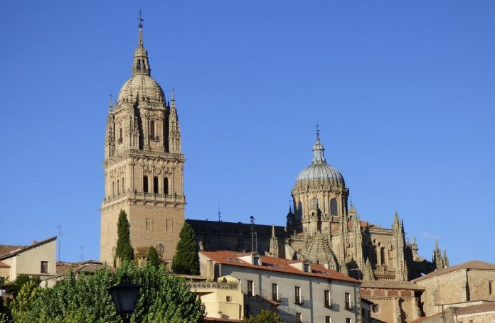 Catedral de Salamanca. ¿Tragar polvo o construir una catedral? Esa es la diferencia. PROPRONEWS