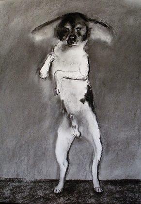 El infante don salchicha. Carboncillo-papel 70x50. 2013