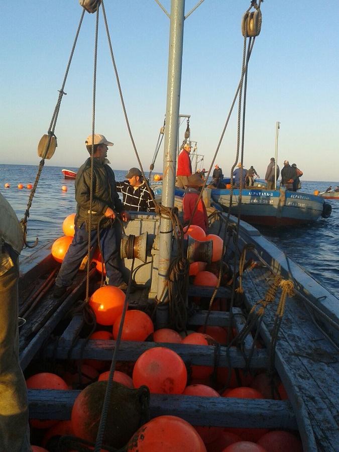 Barcos transportando boyas.