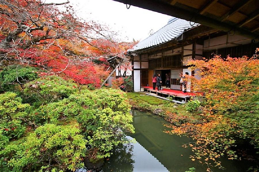 Jardines del templo Kioto Iwakura Jinsso-in, donde antaño se atendía a los locos. JAPAM HOPPERS