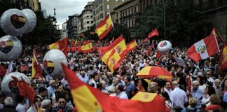 Manifestación del 2 de julio en Pamplona contra la imposición del euskera. NR
