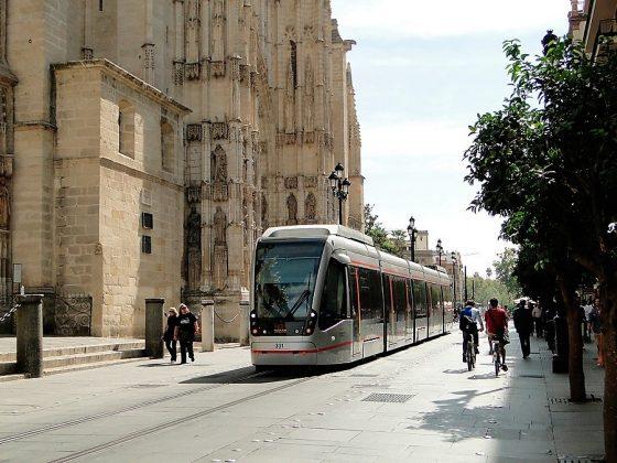 Solería del entorno de la catedral y la Giralda de Sevilla. SEVILLA CITY CENTRE