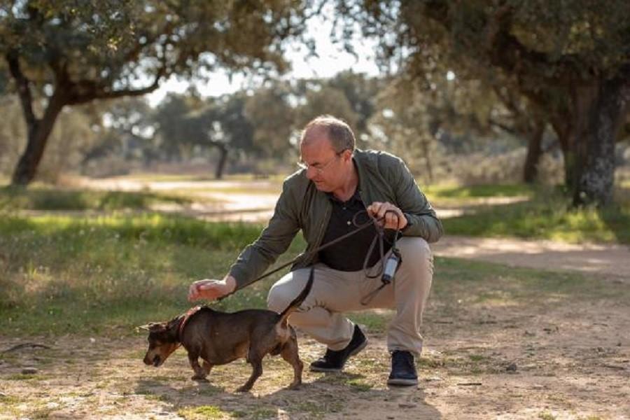 Monago, con su perrito, como Barack Obama, otro derroche de imaginación. PP