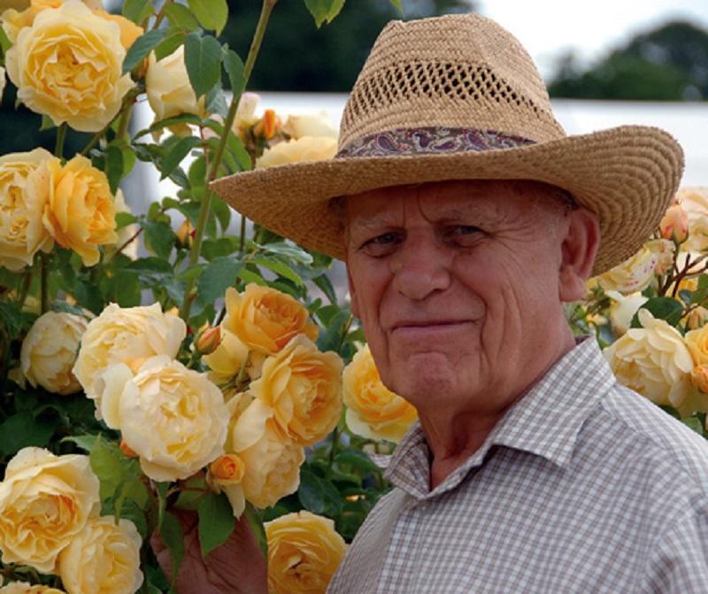 David Austin, escritor, botánico y creador de rosas. WIKIPEDIA