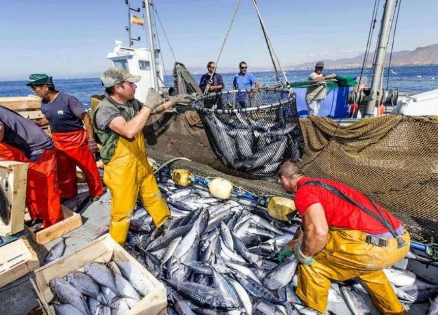 Es imprescindible practicar una pesca sostenible. RTVE