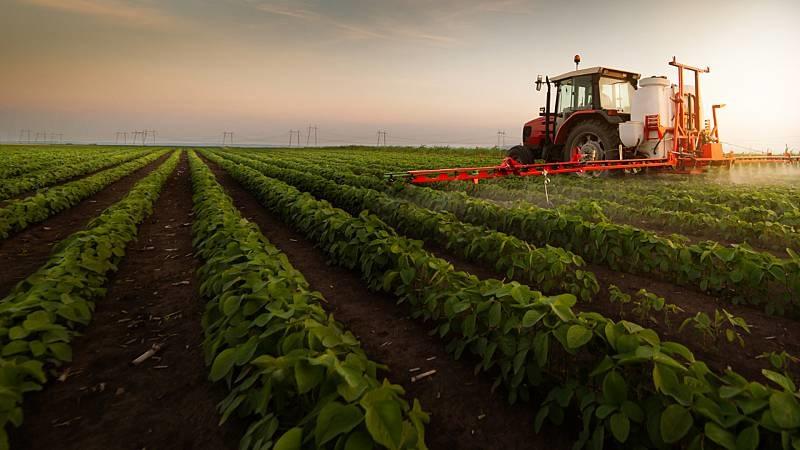 La agricultura intensiva puede ser perjudicial. RTVE