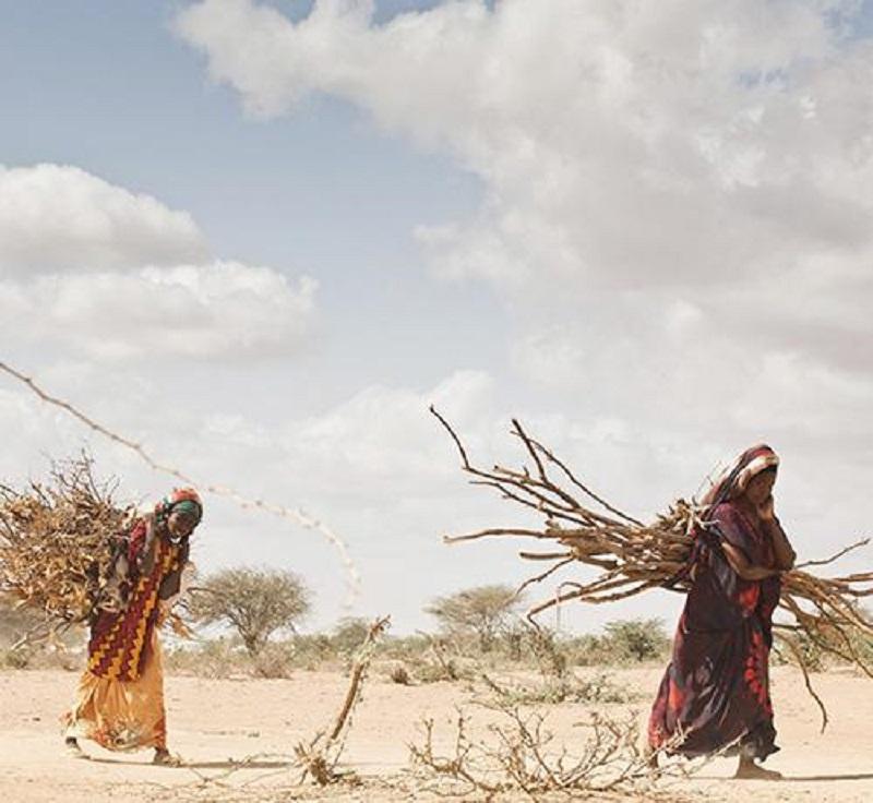 Numerosos países padecen graves problemas de hambre o malnutrición. ACNUR