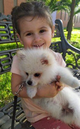 Con Simbad, su perrito pomerania. PROPRONEWS