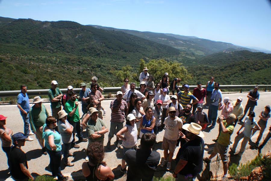 Explicando un perfil de suelo en el Parque Natural Los Alcornocales. Jornada de campo del GEOLODÍA2015, organizado por la U. de Cádiz.
