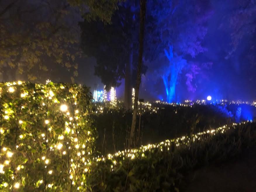 Más de un millón de luces led. PROPRONEWS