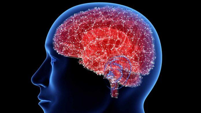 El cerebro humano, un órgano perfectamente manipulable. RTVE