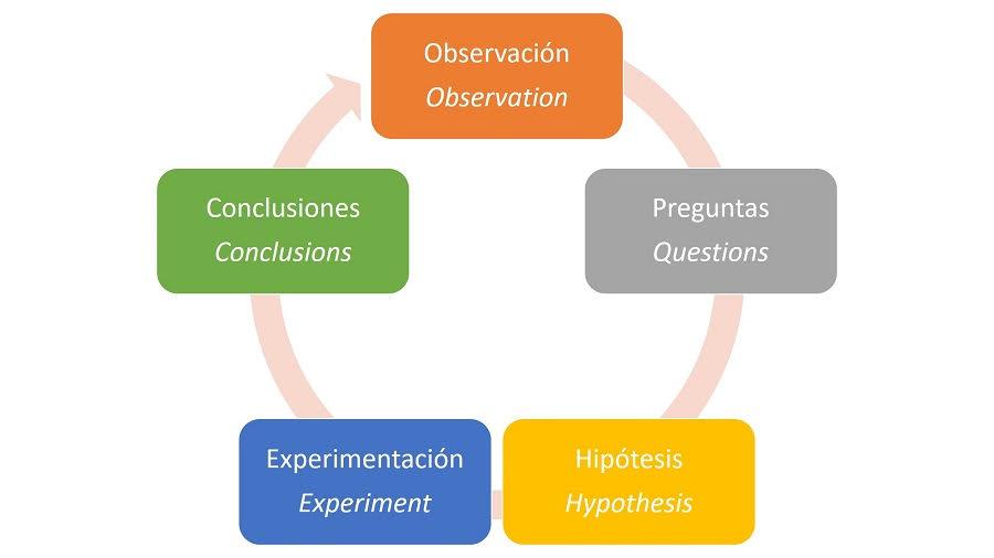 Etapas generales del método científico.