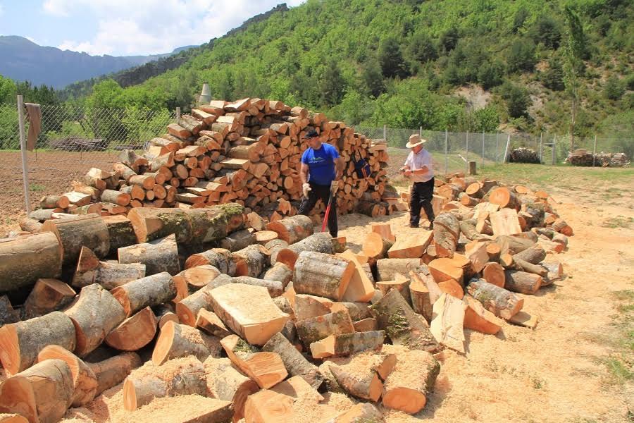 El suelo produce bienes como la biomasa, usada como combustible. Artemi CerdàImaggeo