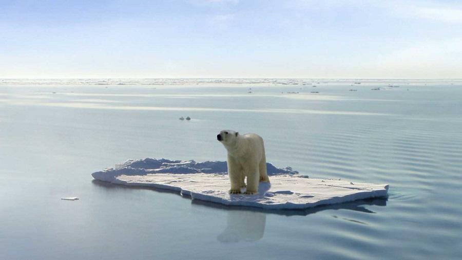 Contra la amenaza del cambio climático solo cabe la acción colectiva y global. RTVE